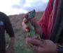 En Vidéo – Etude de la Biodiversité dans le fleuve Medjerda – Projet Med'Ex